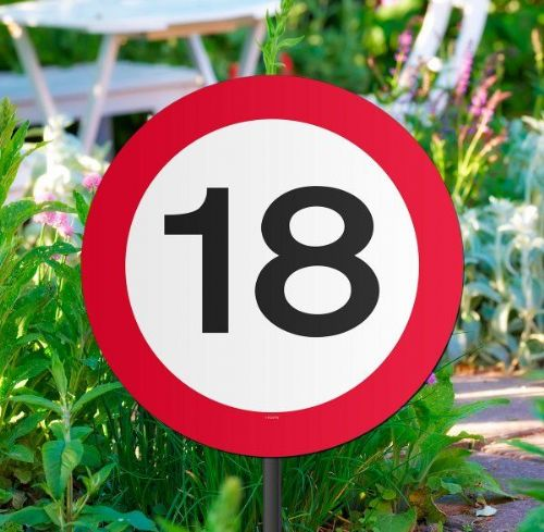 Traffic Sign 18th Party Garden Sign Birthday Decoration